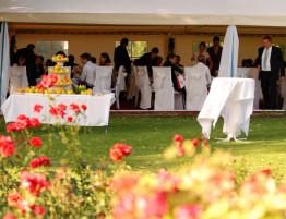 svadba_v_stane_impuls
